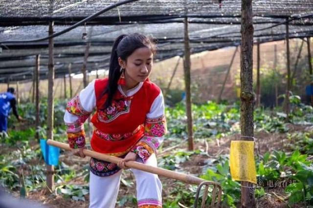 95后云南美女幼师转行做主播:屠夫女儿跳出大山,一年跑40村